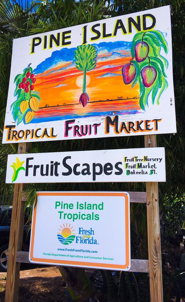 FruitScapes: 12870 Stringfellow Rd, Bokeelia, FL