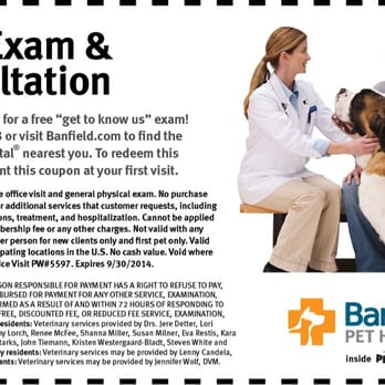 photo regarding Banfield Coupons Printable named Banfield Puppy Medical center Coupon - Animals Gallery