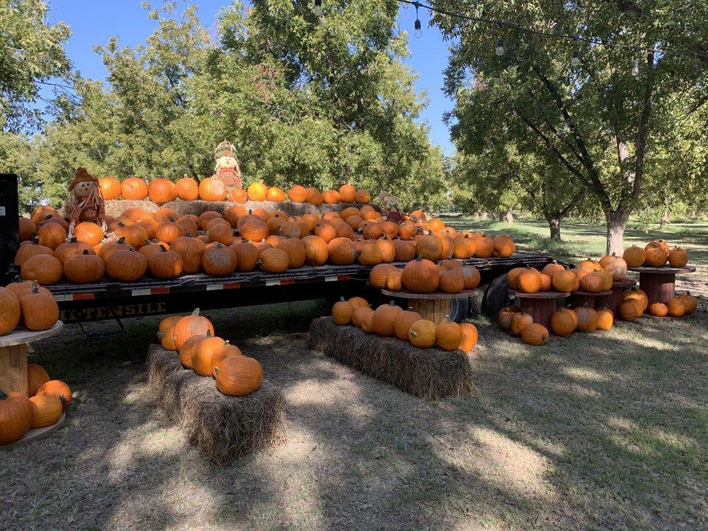 Ramirez Pecan Farms: 13709 N Loop Dr, Clint, TX