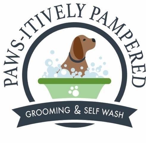 Paws-itively Pampered Grooming & Self Wash: 41274 Kalifornsky Beach Rd, Kenai, AK