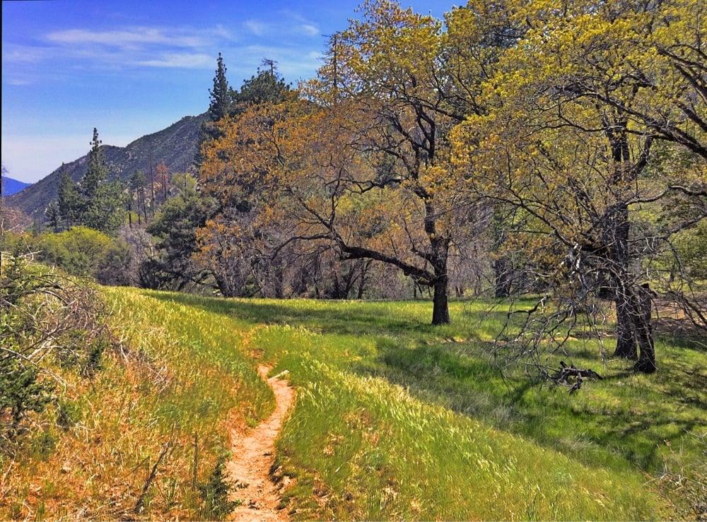 Pine Valley - 12 Photos - Hiking - Jamesburg, CA - Yelp