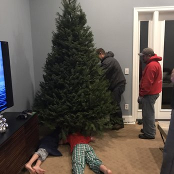 Photo of MJW Christmas Trees - Kirkland, WA, United States - MJW Christmas Trees - 50 Photos & 22 Reviews - Christmas Trees