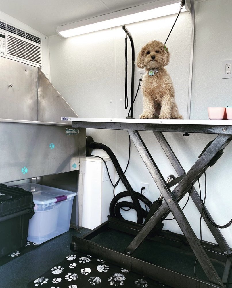 Odalys Mobile Dog Grooming Miami: 9846 N Kendall Dr, Miami, FL