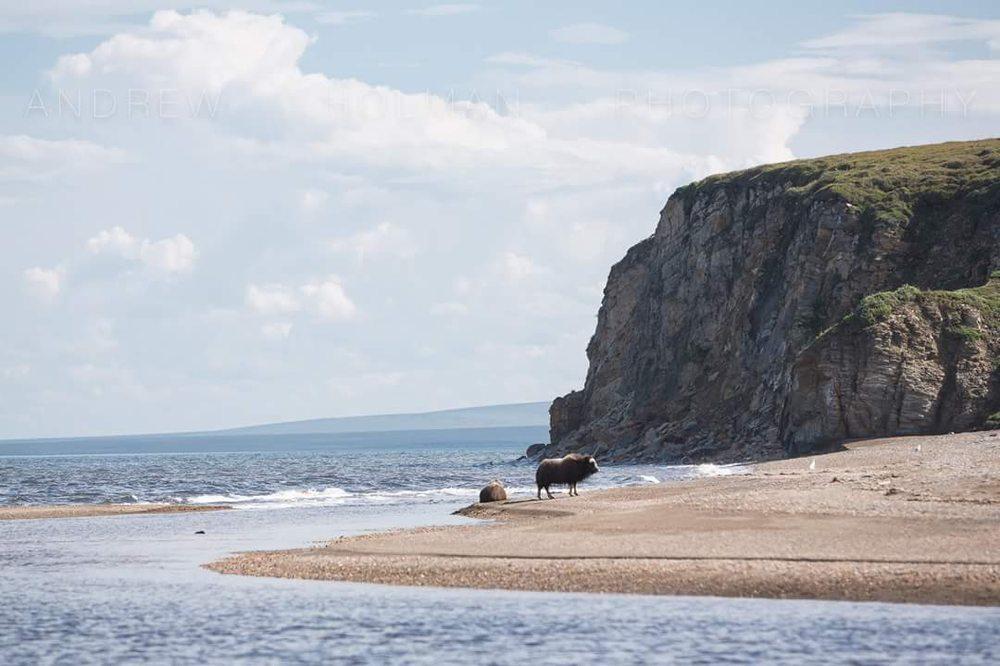 Deering Beach: Deering, AK