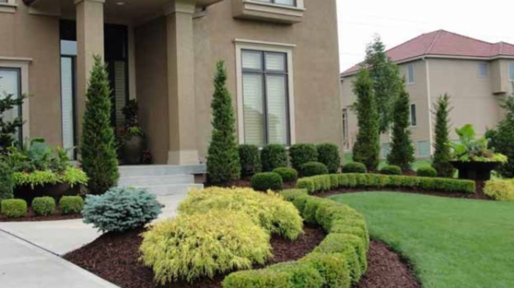 Elite Landscaping and Lawn Maintenance: Winterville, NC