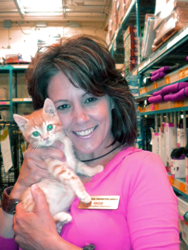 Pampered Paws Pet Sitting Services: 45 Hazel Ln, Springfield, IL