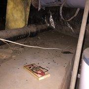 Photo Of Surf City Termite Pest Control Huntington Beach Ca United States
