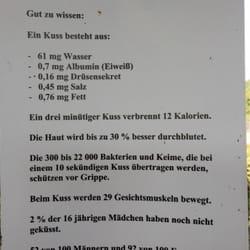 Irrgarten der sinne 11 fotos kunst kultur linda - Irrgarten deutschland ...