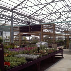 Wallitsch Nursey and Garden Center Nurseries Gardening 2608