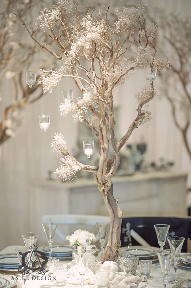 Babys Breath Manzanita Tree Centerpiece Yelp