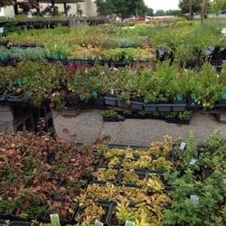 photo of wilsons garden center columbia mo united states herbs herbs herbs - Wilsons Garden Center