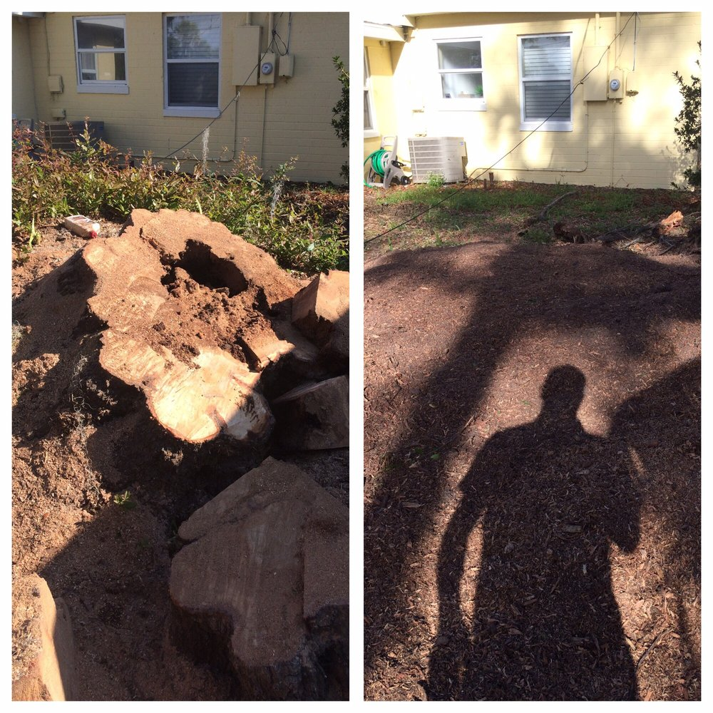 Comly's Stump Grinding, LLC: 371 N Goodwin St, Lake Helen, FL