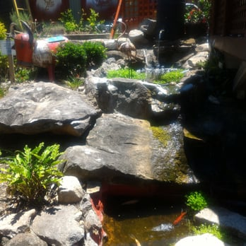 Photo Of Botanica Garden Cafe   Waverton New South Wales, Australia. The  Amazingly Relaxing