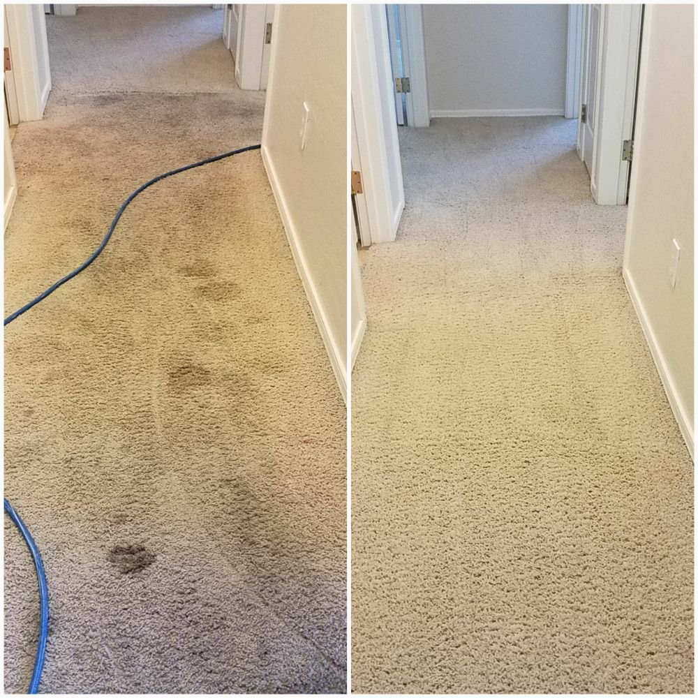 Ultimate Floor Care 42 Photos Carpet Cleaning