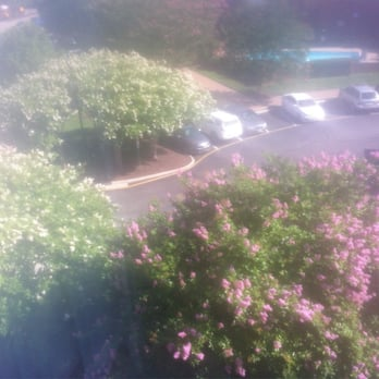 Hilton Garden Inn Richmond Innsbrook 52 Photos 38 Reviews