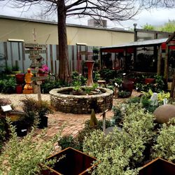 Shades Of Green 35 Photos Reviews Nurseries Gardening 334 W Sunset Rd San Antonio Tx Phone Number Last Updated December 17 2018 Yelp