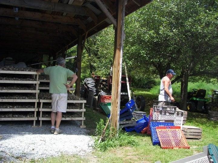 Burdick Creek Gardens: 11239 Dimock & Nicholson Rd, Montrose, PA