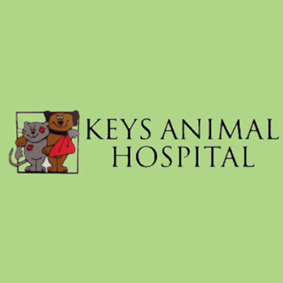 Keys Animal Hospital: 11425 Overseas Hwy, Marathon, FL
