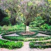 Photo Of Kanapaha Botanical Gardens   Gainesville, FL, United States.  Beautiful