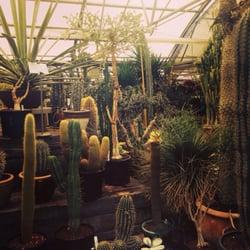 Paulino Gardens 23 Photos 73 Reviews Nurseries