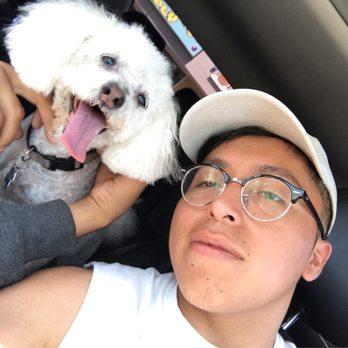 Dog Grooming Sherman Oaks
