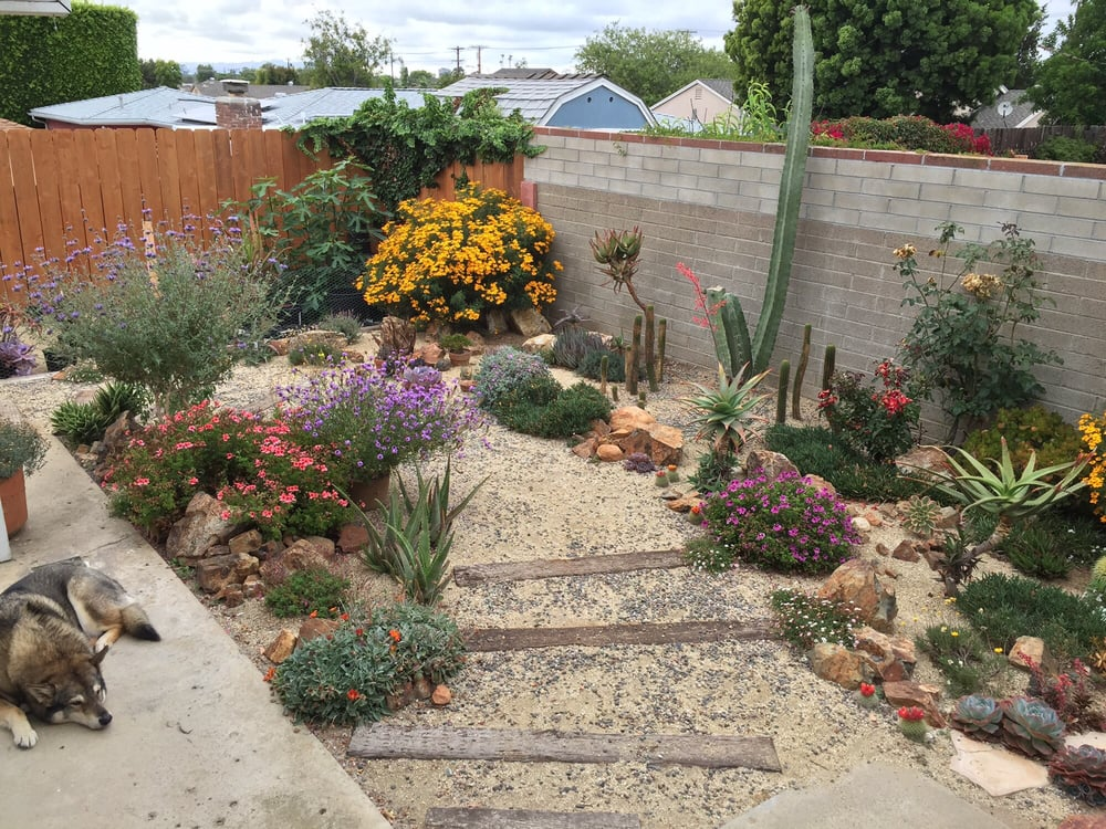 san diego s best 25 landscaping companies in 2018