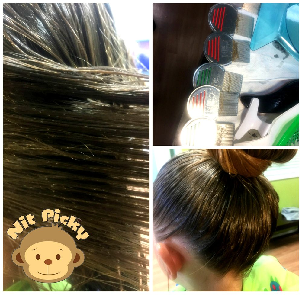 Nit Picky Lice Salon Services 11 Photos 62 Reviews Lice