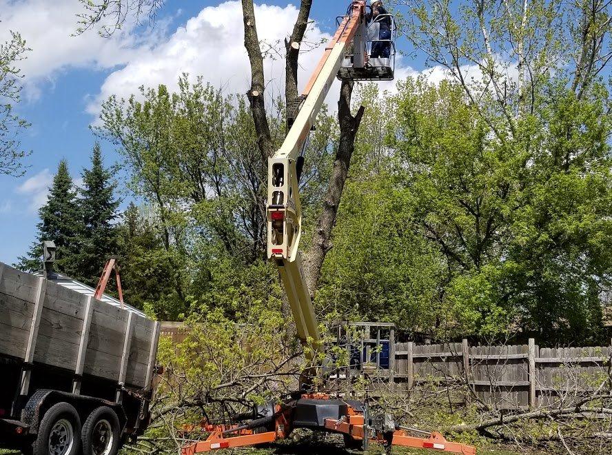 Bob's Tree Service: 5056A Washington St, Butte Des Morts, WI