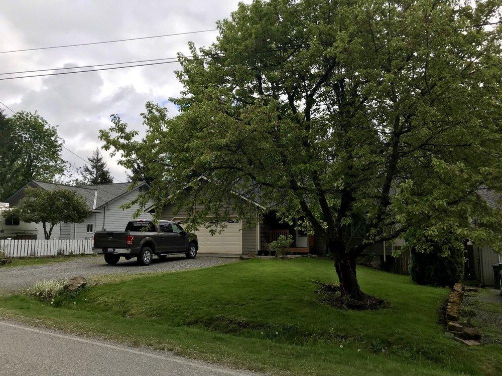 Avid Tree Care: 17104 Zoya Dr, Mount Vernon, WA
