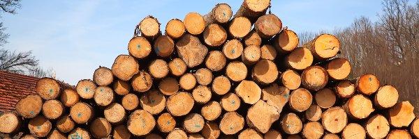 Robinson Lumber: 1878 Day Hollow Rd, Owego, NY