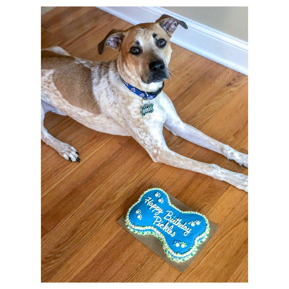 Wag N' Wash Natural Pet Food & Grooming: 22598 MacArthur Blvd, California, MD