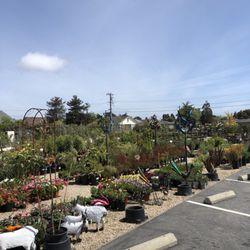 Genial Photo Of The Garden Company   Santa Cruz, CA, United States