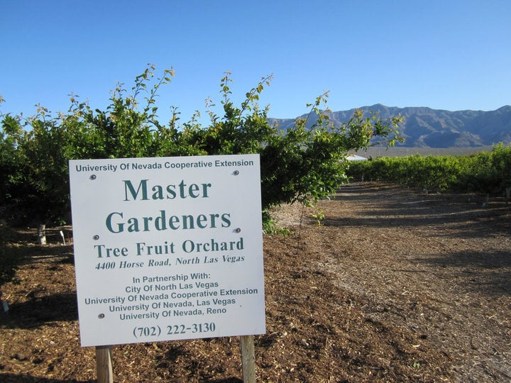 Master Gardener Orchard   Farmers Market   Horse Dr, Centennial, North Las  Vegas, NV   Phone Number   Yelp