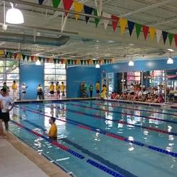 Pengu Swim School 14 Photos 25 Reviews Swimming Lessons Schools 984 Wakefield Oak