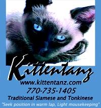 Kittentanz Cattery