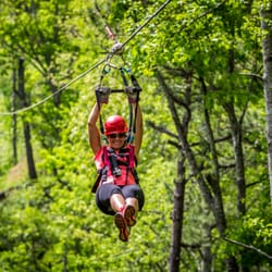 Photo of Navitat Canopy Adventures - Asheville - Barnardsville NC United States & Navitat Canopy Adventures - Asheville - 67 Photos u0026 99 Reviews ...
