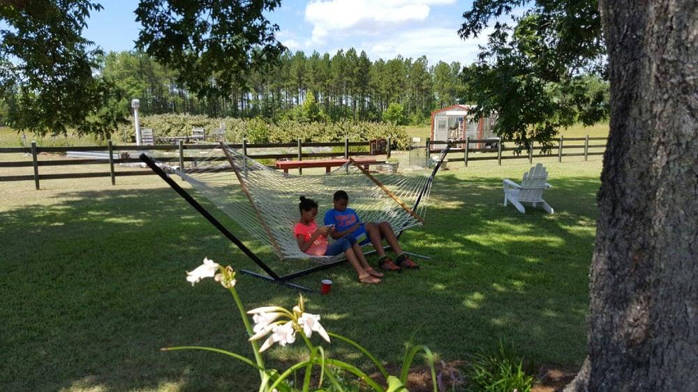 White Hills Lavender And Herbs Farm: 1419 Fort Creek Rd, Dearing, GA
