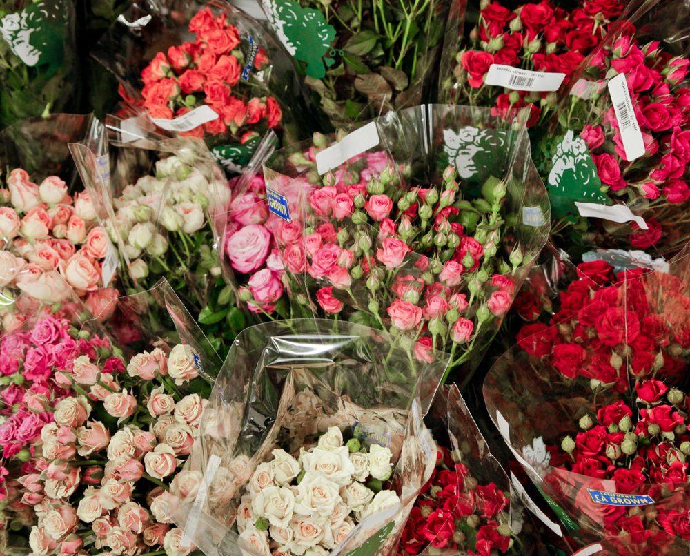 Sooner Wholesale Florist Florists 4733 S Memorial Rd Tulsa Ok
