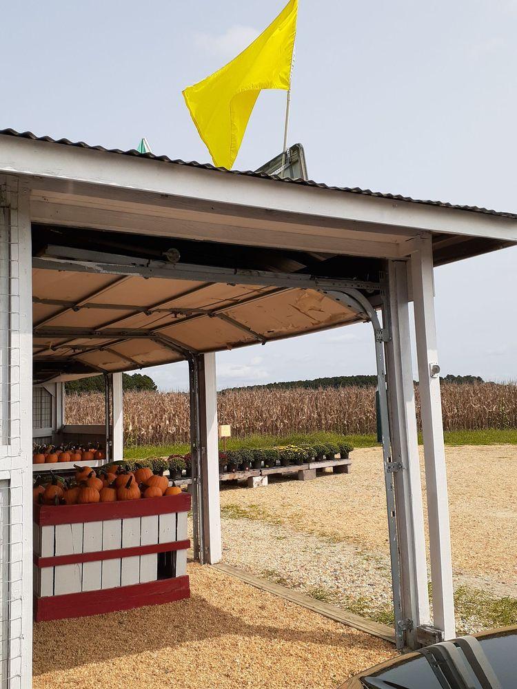 Guy Farms Produce: 27790 Ocean Gtwy, Salisbury, MD
