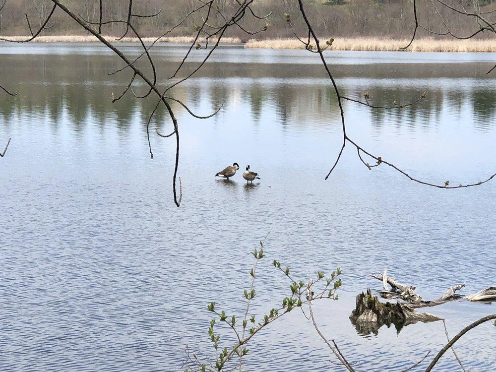 Dryden Lake Park: W Lake Rd, Dryden, NY