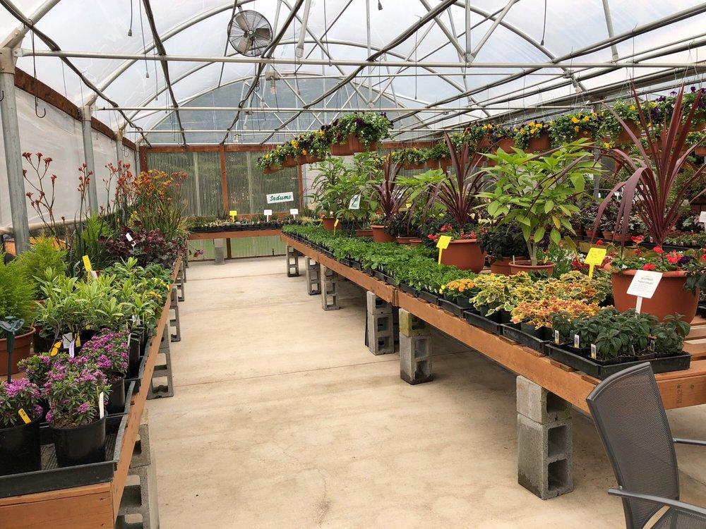 N & M Herb Nursery: 11702 Feller Rd NE, Hubbard, OR