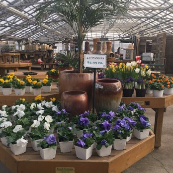 Photo Of Johnson S Florist Garden Centers Olney Md United States Greenhouse