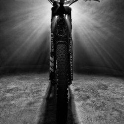 Luna Cycle - (New) 20 Photos & 45 Reviews - Bikes - 1330 E