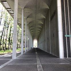 University At Albany - SUNY - 38 Photos & 28 Reviews
