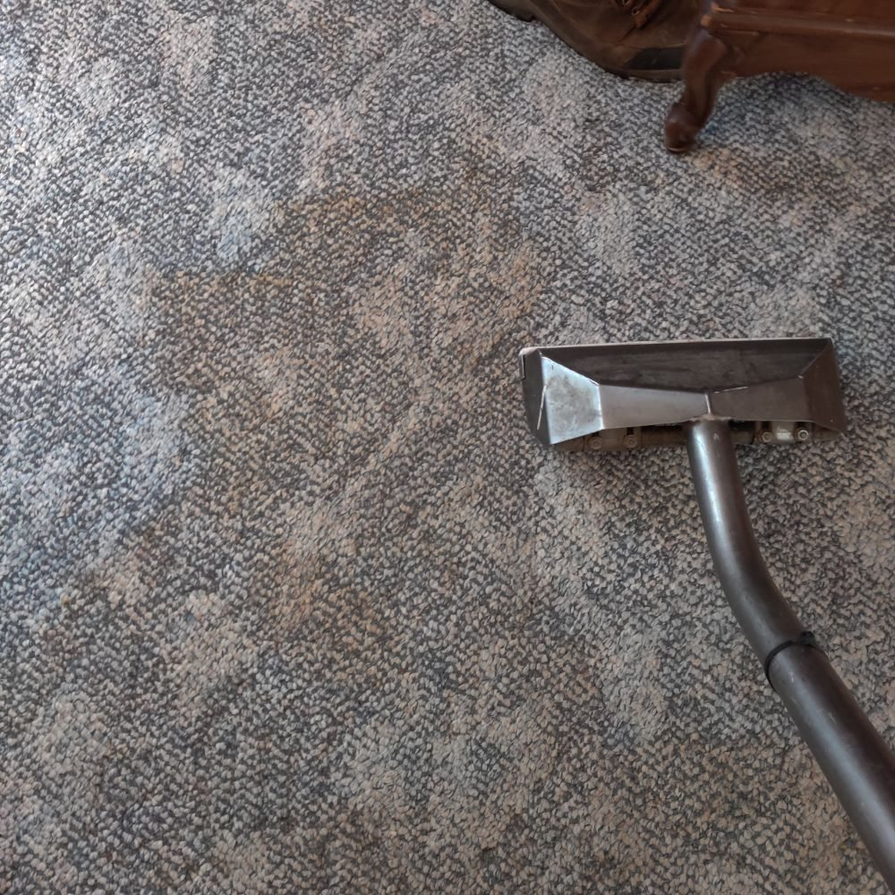 Steam and Clean Carpet Cleaning