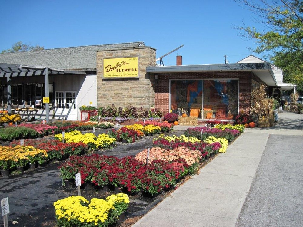Doebel's Flowers: 401 W US Rt 20, Clyde, OH