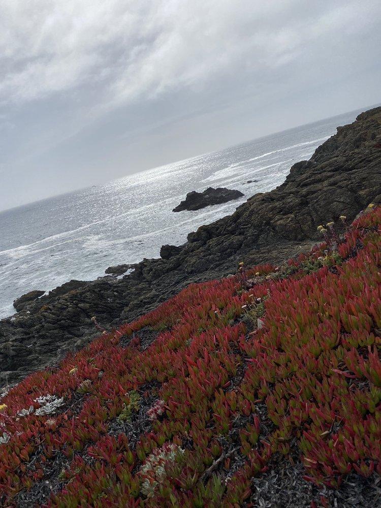 Duncan's Landing: 1000 State Park Rd, Bridgehaven, CA