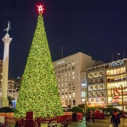 Photo Of Macyu0027s Christmas Tree   San Francisco, CA, United States. I Love