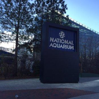 National Aquarium Last Updated June 2017 1536 Photos