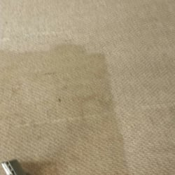 Photo Of Tri County Carpet Cleaning Levittown Ny United States During
